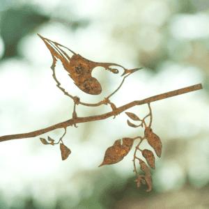 Kleverige boomklever